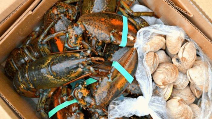 vận chuyển hải sản tươi sống